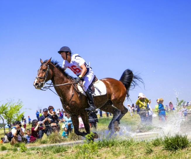 济南国际赛马场基地